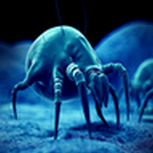 how-to-get-rid-of-dust-mites