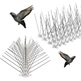 5Pin Stainless Steel Bird Spikes Deterrent Spikes Repellent Fence Spikes (Pack Of 10)
