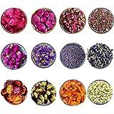CoolCrafts 12 Sac Fleurs Séchées Naturelles Fleur Séchées pour Bougie Savon, Boutons de Roses Séchés Fleur Jasmin