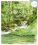 Aquarelle, de l'eau à l'œuvre (Les secrets de l'artiste)
