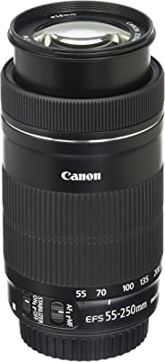 Canon EF-S 55-250 IS STM SLR Lens