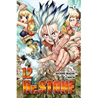 Dr. Stone: 12