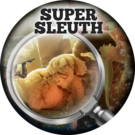 Cats Island  Super Sleuth