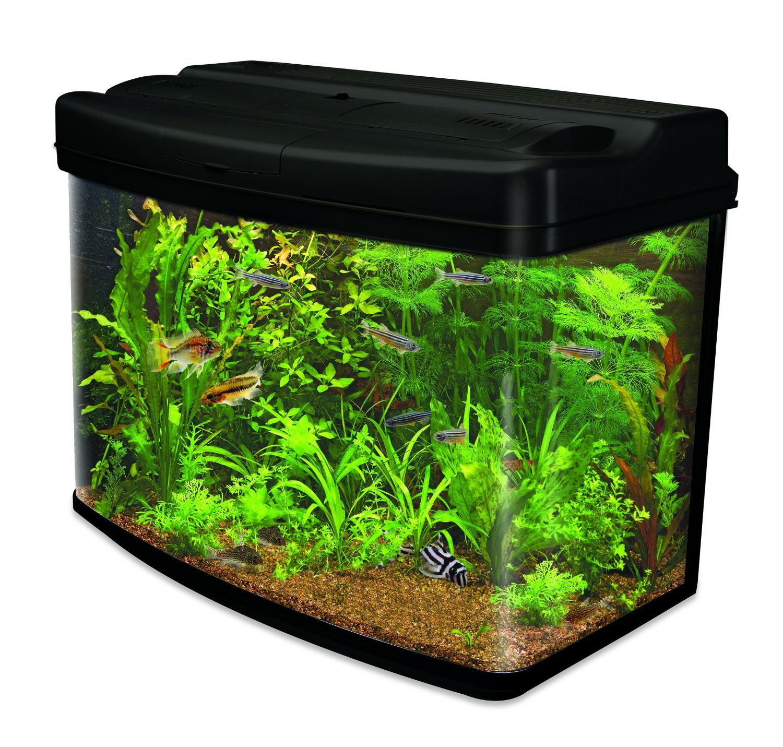 Interpet Fish Pod Glass Aquarium Fish Tank including CF3 Cartridge Filter, 120 Litre