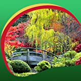 Sfondi orientali del giardino orientale