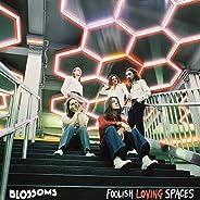 Foolish Loving Spaces [Explicit]