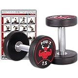 POWRX Professional Ronde Dumbbell Set van 2 incl. Workout I Rubber Dumbbell Coating SENSITIVE 2,5-30 kg I Verchroomd en gekar