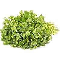 Fresh Organic Coriander, 100g