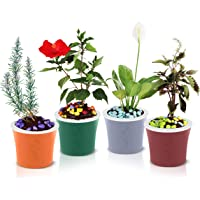 Kurtzy PP Self Watering Flowering Plant Pots for Indoor Garden Balcony Office Decor- Pack of 4 14x17cm