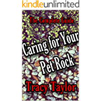 The Complete Guide for Caring for Your Pet Rock