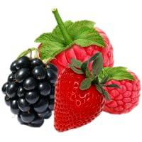 Low Carb Lebensmittel Liste Lebensmittel mit wenig Kohlehydraten