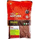 Pro Nature Indian Product 100% Organic Ragi Millet, 500 g