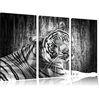 sch ner neugieriger tiger schwarz wei auf 3 teiler leinwandbild 120x80 bild auf leinwand. Black Bedroom Furniture Sets. Home Design Ideas