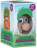 Tobar Mr Grasshead Hair Grow Toy