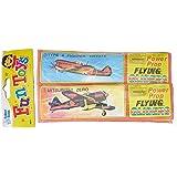 Baker Ross Glidflygplan, Flerfärgad, 6 Stycken