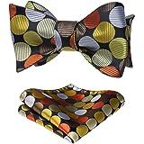 HISDERN Set da papillon da uomo con fazzoletto da cerimonia e fazzoletto da taschino