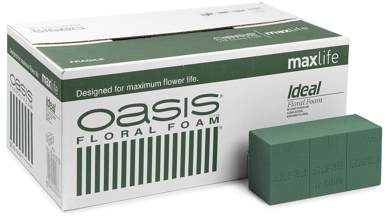 oasis ideal floral foam maxlife brick box contains 20 bricks olore home amazoncouk kitchen u0026 home