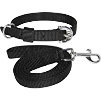 PEDIGONE Dog Belt Combo of Dog Collar with Dog Leash Specially for Small Breeds Dog Collar Leash (Black)