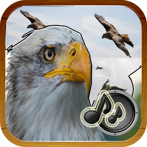 Klänge Vögel