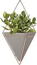 Umbra Trigg Wandvase & Geometrische Deko – Übertopf Für Zimmerpflanzen, Sukkulenten, Luftpflanzen, Kakteen, Kunstpflanzen und Mehr