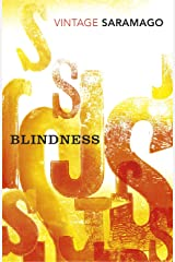 Blindness (Vintage Classics) (English Edition) Formato Kindle