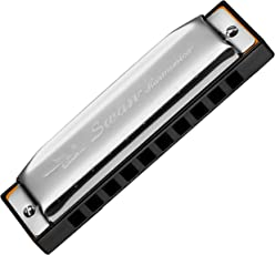 Swan SW1020 10-Hole 20 Tone Diatonic Harmonica with Box (Silver, Key C)
