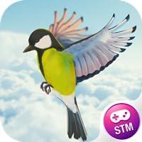 Hoher Flug Von Vogel 3D Pro