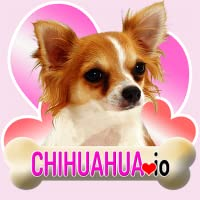 Chihuahua io (Opoly-style board game)