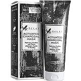 Mascarilla de Carbón Facial Eclat – Mascarilla Facial Carbón Activo con Carbón de Bambú Natural y Mezcla de 4 Arcillas Incluy