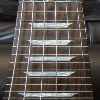 Electric Guitar Fretboard Addict Free