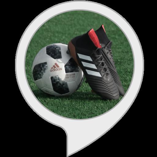 Zufallssport (Fußball-volant)