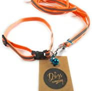 The Pets Company Reflective Nylon Leash with Collar Set for Puppy and Small Dogs, Orange