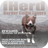 iHerd:Border Collie Lovers magazine