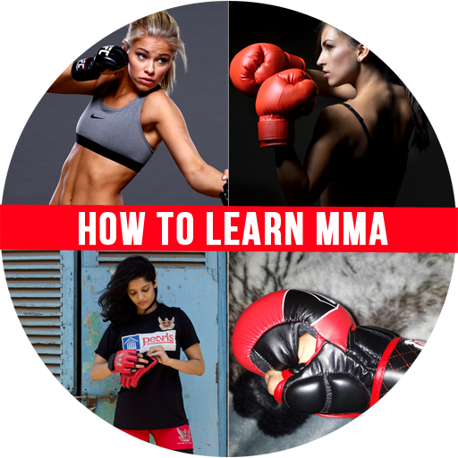 how-to-learn-mixed-martial-arts-mma-techniques