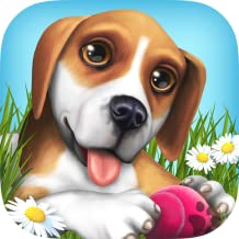 Un'estate di divertimento con DogWorld