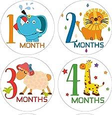 Fusion Baby Milestone Stickers - Multicolor 006