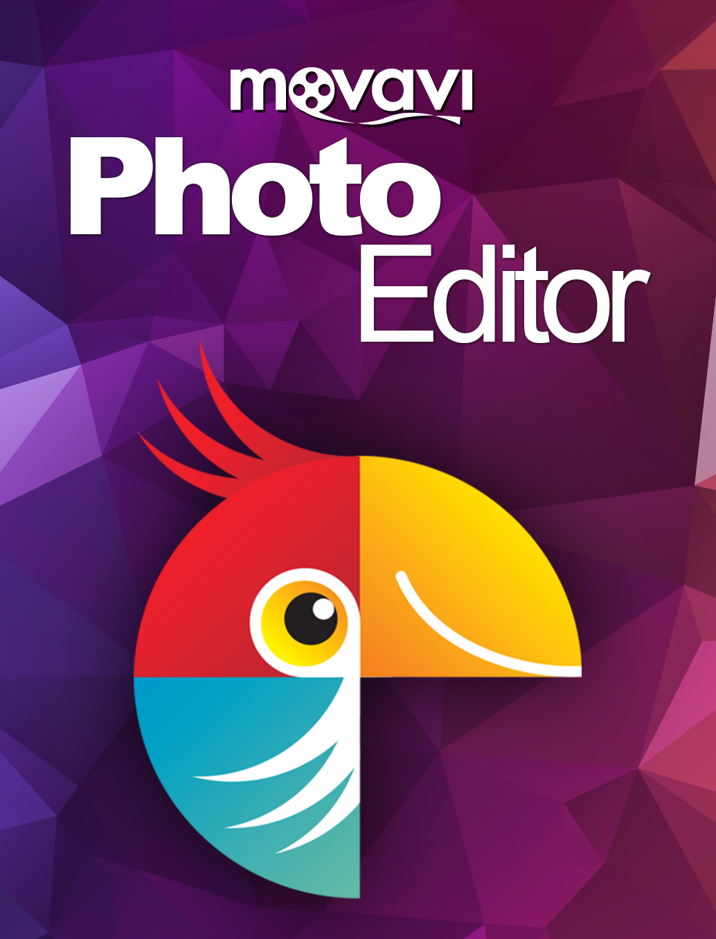 movavi-photo-editor-4-licence-personnelle-telechargement