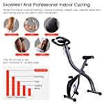 Ozoy Fitness Cycle - Foot Pedal Exerciser - Foldable Portable Foot, Leg Exercise Pedaling Machine - Stationary Bike...