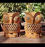 Kaka jiji handicraft Wooden Handmade owl Set of 2 II Ullu is Made Very Carefully and with Finished Netted Design II Anti…
