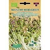 Germisem Orgánica Mizuna Mix Micro-Greens Semillas 10 g (ECBIO1905)
