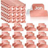 72 Pieces Adhesive Monthly Stickers Monthly Planner Index Tab Decorative Monthly Label Monthly Calendar Stickers for Office S