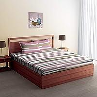 Spaces Jubilance Cotton 180 TC Double Bedsheet with 2 Pillow Covers - Multicolour