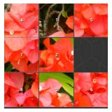 Mauricio Slide Puzzle I