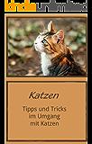 Katzen: Tipps und Tricks im Umgang mit Katzen