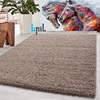 BPIL Shaggy Rugs Soft plain Thick Pile Large Small Antiskid Area Rug (Beige, 60X110CM)