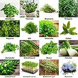 """Mezcla/Set""""Jardín de hierbas"""" 16 x 50 semillas de las hierbas más populares de Portugal / 100% natural (Sin químicos/ayudante"""