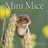Mini Mice Mini Wall Calendar 2021