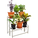 D&V ENGINEERING - Creative in innovation Metal 2 Tier Step Type Plant Stand/Pot Stand for Living Room/Garden/Balcony…