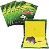 (PACK OF 10) MOUSE TRAP GLUE STICKY BOARD FOR RATS, COCKROACHES, SPIDERS ETC. Non-toxic Eco-Friendly