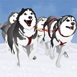 Hundeschlittenfahrten im Winter Rennen: der Hund kaltes Eis Schlitten im Nordpol - Gratis-Edition